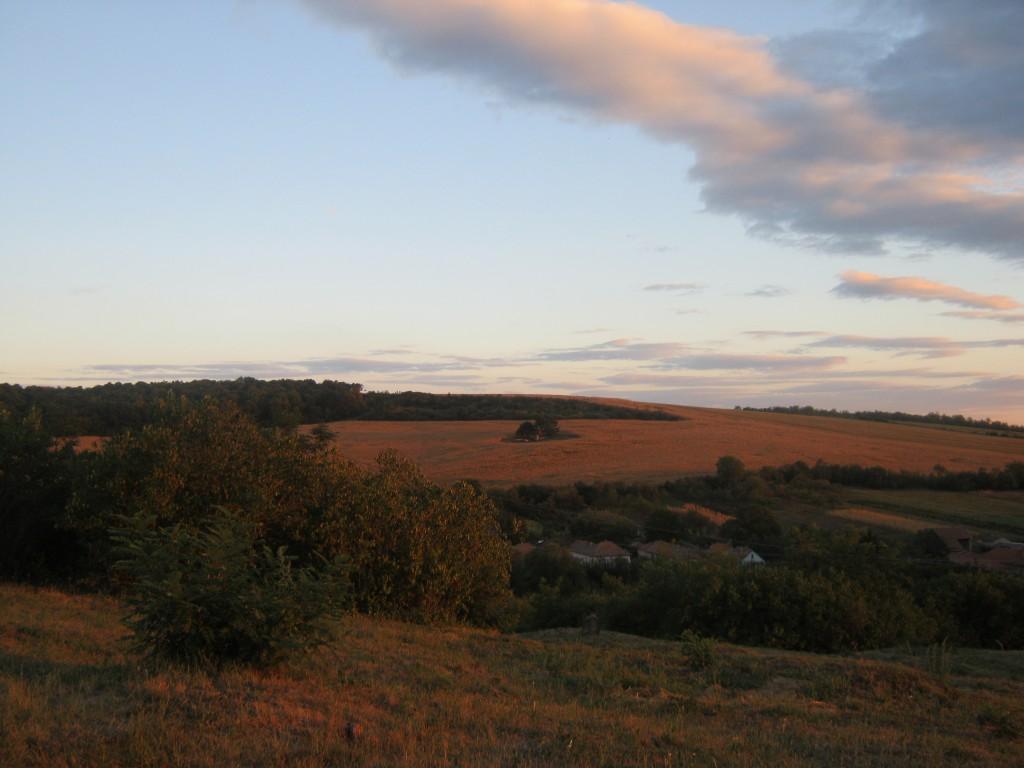 Uitzicht op de omgeving