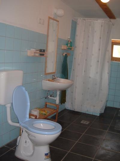 De badkamer met douche, wastafel en toilet