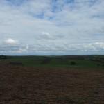 weids uitzicht met op de achtergrond de heuvels van Tokaj