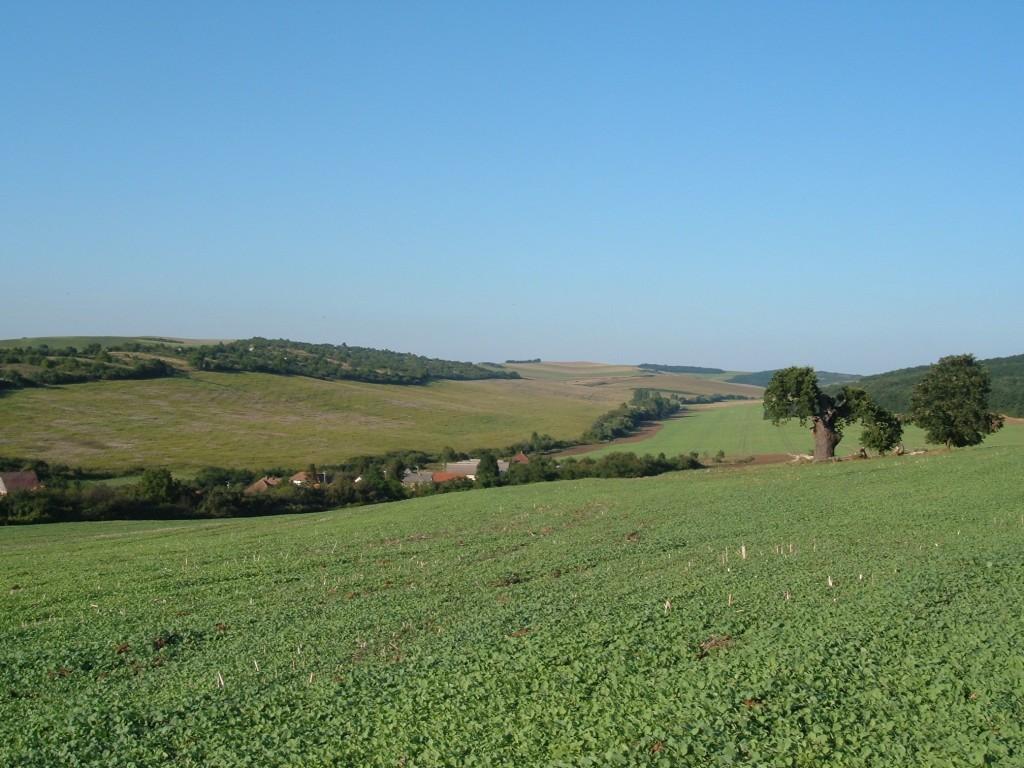 Weids uitzicht op de heuvel