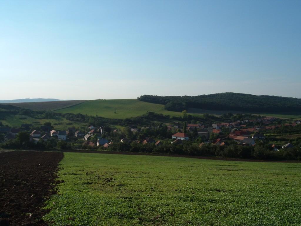 Het dorp in de vroege lente