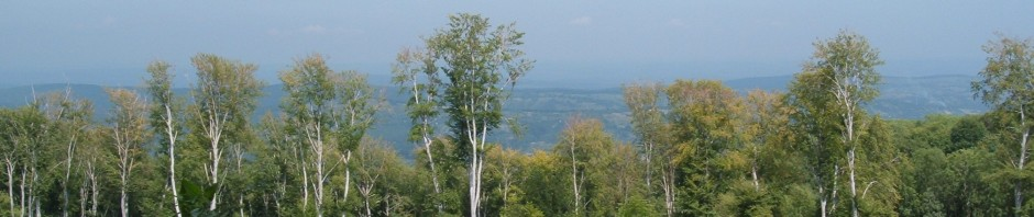 Uitzicht vanaf de hoogvlakte van De Bükk